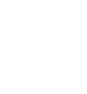 Alinsod Institute for Vulvovaginal Surgery Logo